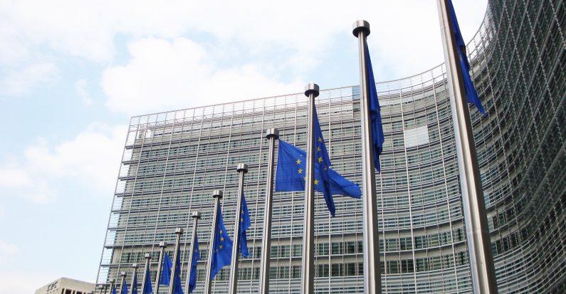 Hrvatska nema alternative članstvu u EU, ali hrvatska politika u EU mora imati alternativu